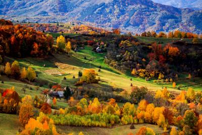 Autumn in Transylvania landscape