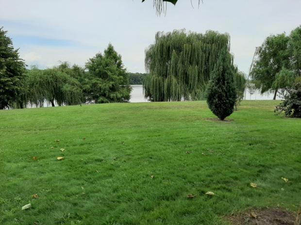 Chitila park