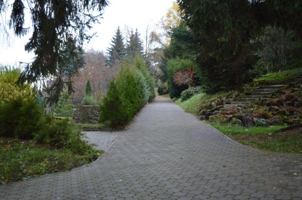 Bothanical garden Cluj Napoca